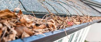 Gutter Cleaning Get Clean Gutters With Keltom Gutters