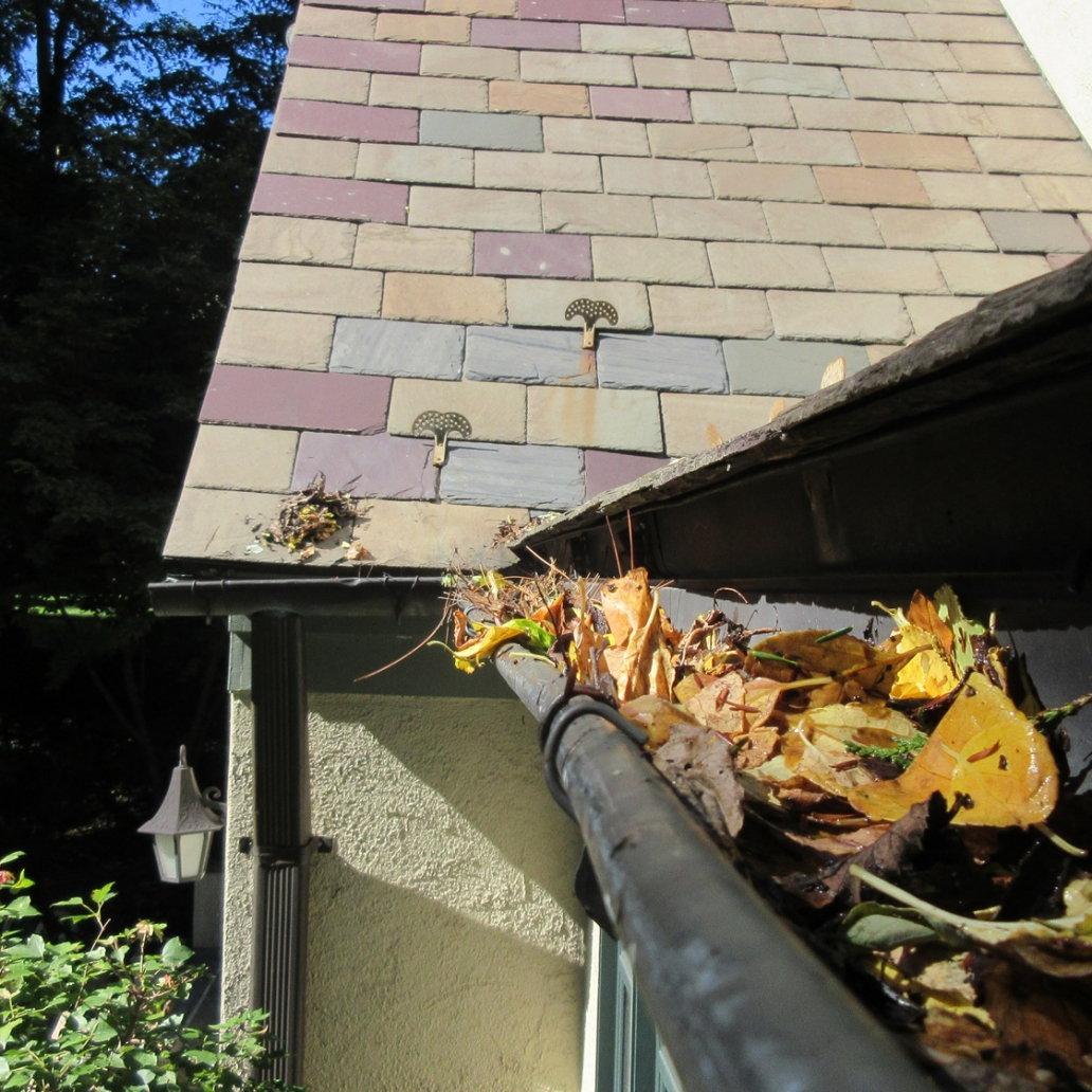 slate wood roof gutter cleaning 1